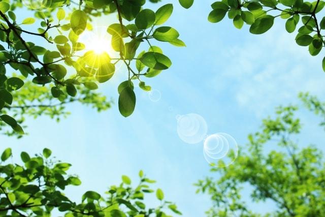 夏の空と紫外線イメージ