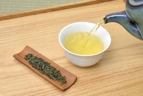 花粉症・お茶・べにふうき