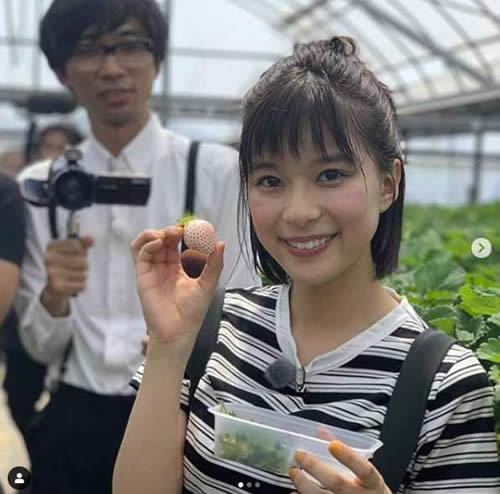 炎の体育会・芳根京子